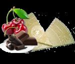 Lázeňské trojhránky Višně v čokoládě