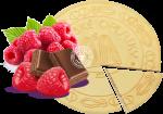 Spa wafers Raspberries in chocolate